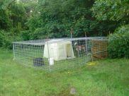 Nuestras Raices goat trap