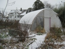 winter picture of bioshelter